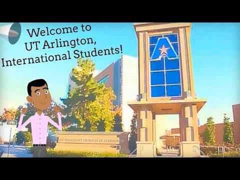 Anytime Advising for UTA International Students