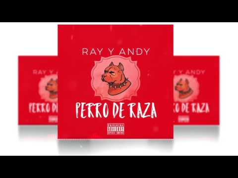 Ray & Yayoh - Perro De Raza [Official audio]