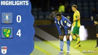 Sheffield Wednesday 0 Norwich City 4   Extended highlights   2018/19
