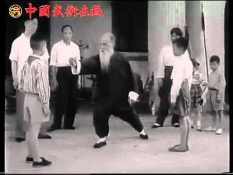 Master Wang Ziping