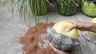 Creative flower pots ideas ! How to make beautiful cement pot at home easily