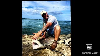 shark fishing with blakey in florida