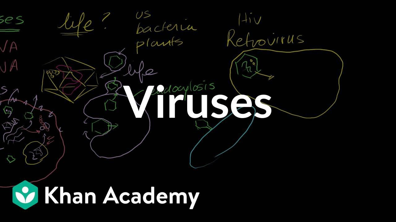 Viruses (video) | Khan Academy