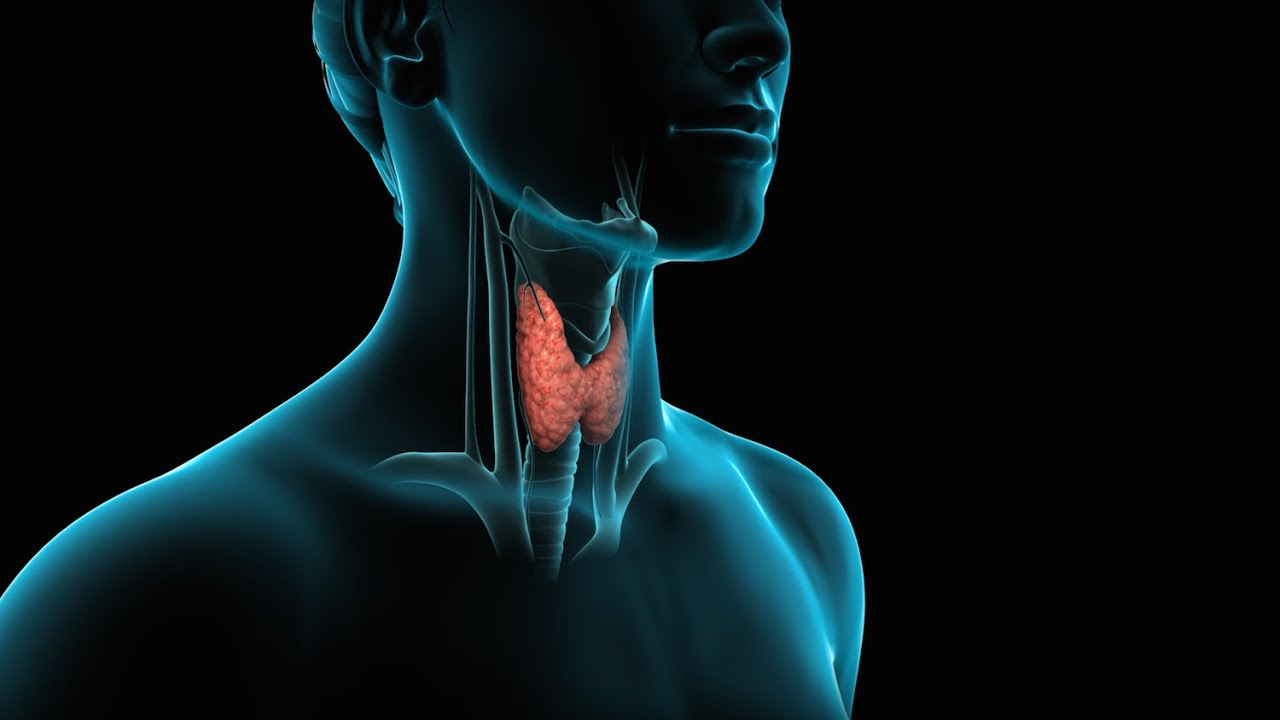 Thyroid Surgery Thyroidectomy Youtube