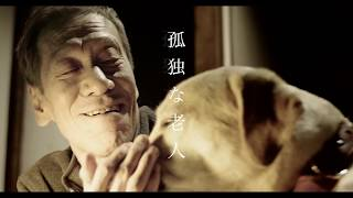 短編映画「老老犬」予告編 監督:斉藤玲子 出演:斎藤洋介 渡辺真起子 ...