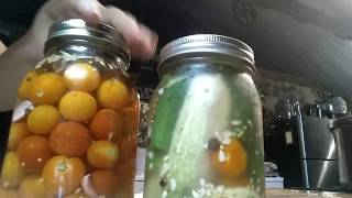 ~ Small batch salsa verde ~ small batch refrigerator cukes & tomatoes