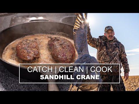 Sandhill Crane Hunting!! | CATCH, CLEAN, COOK