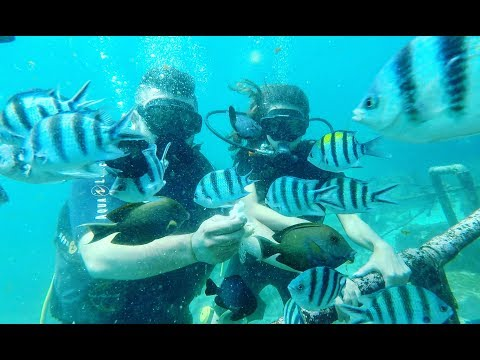 Our Special Honeymoon  in Bali, Abu Dhabi & Dubai | Mathieu & Jennifer