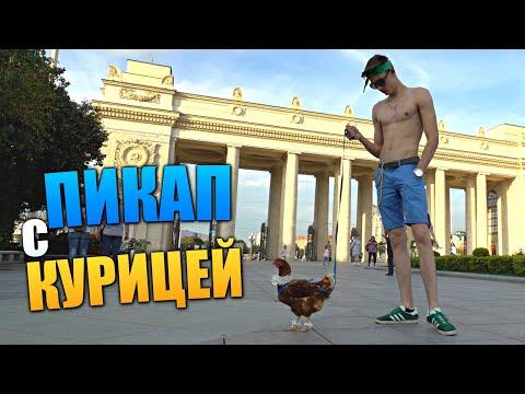 ПРАНК с КУРИЦЕЙ на ПОВОДКЕ - Пикап