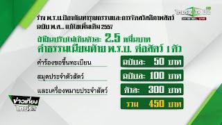 เปิดปมร่าง พ.ร.บ. ลงทะเบียนสัตว์เลี้ยง : ขีดเส้นใต้เมืองไทย | 12-10-61 | ข่าวเที่ยงไทยรัฐ