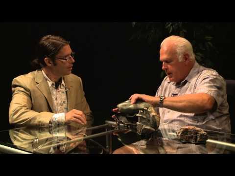 Focus on Arts Interview Phil Hogan, Part 2