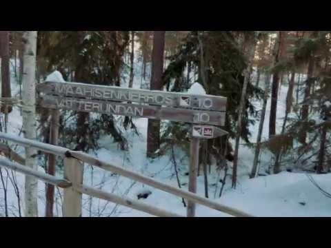 Nuuksio National Park - Helsinki