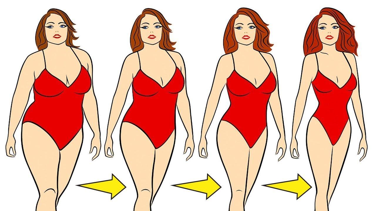 Como bajar la grasa visceral rapido
