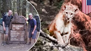 Mountain lion  Hikers record close encounter with large mountain lion   TomoNews