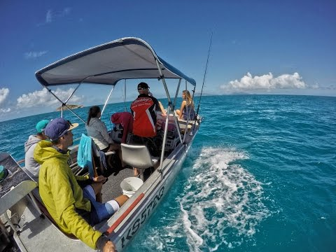 Queensland Adventure - Working Holidays Visa Australia - A chacun ses vacances ! - Sea/Sun
