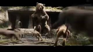 Hollywood action movies top movies special horror movies top
