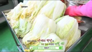 김치 ,김치쇼핑몰,포기김치, 배추김치, 이데일리방송내용