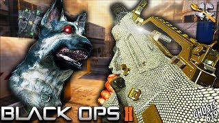 ONE of The Most UNDERRATED Guns in BO2