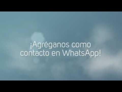 Reflexiones Cristianas y Devocionales para Whatsapp