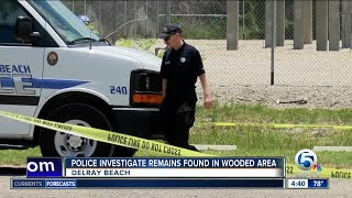 Possible human remains found in Delray Beach