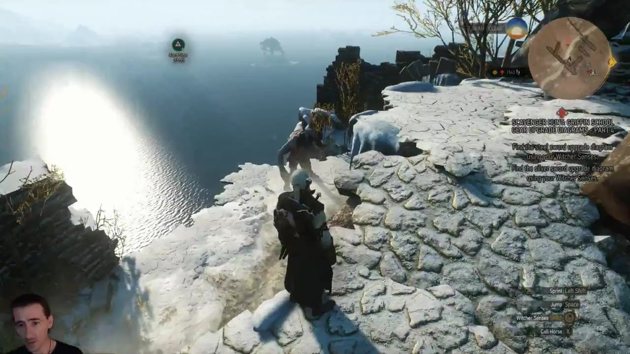 Witcher 3 Ep36 Mastercrafted Griffin/Cat(Feline) Armor, Silver ...