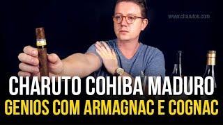 Harmonização do charuto Cohiba Maduro 5 Genios com Armagnac e Cognac!