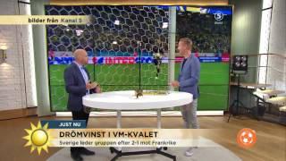 Grattis Sverige! Drömvinst i VM-kvalet - Nyhetsmorgon (TV4)