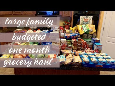 september-2019-one-month-extreme-budget-large-family-grocery-haul-$235-||-walmart-haul-||-aldi-haul