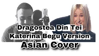 Dragostea Din Tei Katerina Begu-malaysian cover