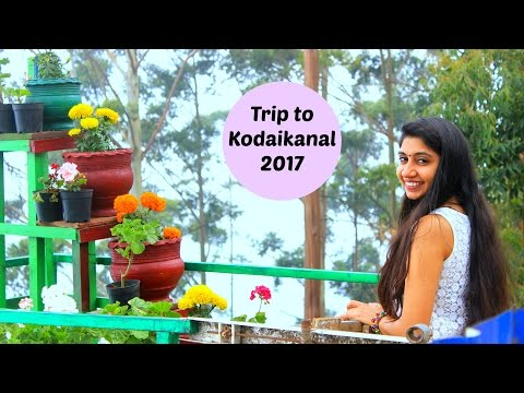 Trip to Kodaikanal, TamilNadu India | Travel Vlog