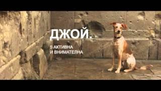 Xperia X в разходка с кучета из Барселона