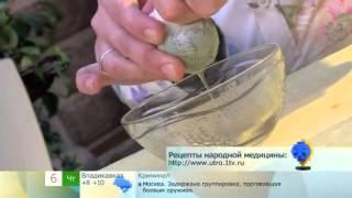 видео Алоэ с медом - лечебные свойства и противопоказания