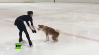 Patinadora olímpica rusa muestra cómo entrena con su perra