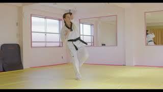 Quiet Flame Taekwondo: Taeguek Oh (5) Jang