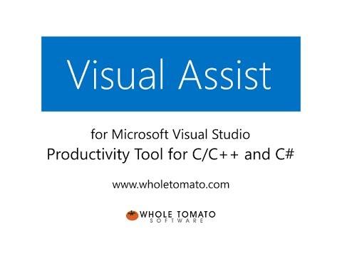 Visual Assist X 10.9 Free Download