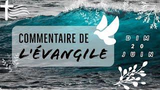 Commentaire de l'Evangile | Homélie — Dimanche 20 juin