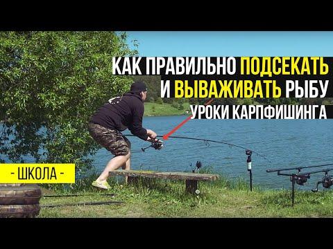 Как правильно подсекать рыбу на спиннинг