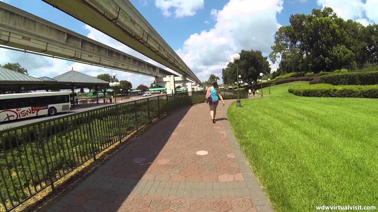 Contemporary Resort Walk From Pool To Magic Kingdom Youtube