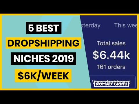 5 Best Shopify Dropshipping Niches For 2019 - Nomad Grind