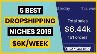 $6K/Week 5 Best SHOPIFY DROPSHIPPING NICHES 2019