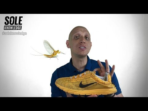 Season 2 Episode 4: Nike Mayfly, The Sneaker Inspired By An Insect