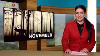 Jahresrückblick - November 2019
