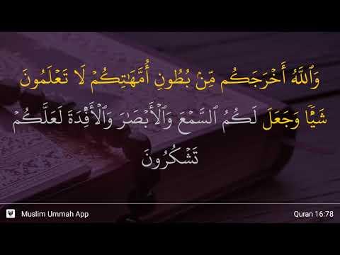 An-Nahl Ayat 78