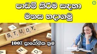පාඩම් කිරීම සඳහා මනස හදාගමු - How to make mind for study | Shanethya TV