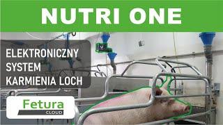 Wesstron - Nowoczesna ferma loch w Polsce/ Innovational reproduction farm in Poland with Fetura