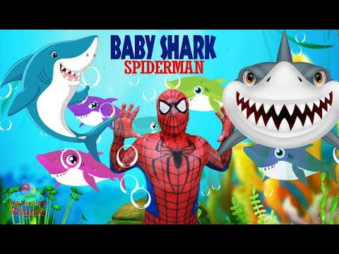 Baby Shark Dance SPIDERMAN - Animal Song -  My Nursery Rhyme for Kids