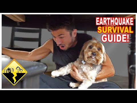 How To Survive An Earthquake... (ACTUAL FOOTAGE)