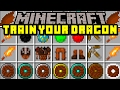 Minecraft HOW TO TRAIN YOUR DRAGON MOD! | PET DRAGONS! NIGHT FURY, HICUP, & MORE! | Modded Mini-Game