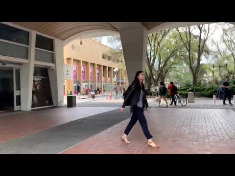 An Afternoon In Melbourne University