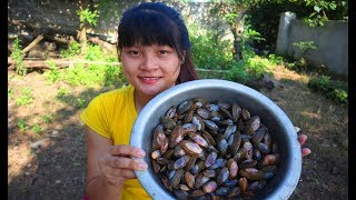 Cooking skills | Guide to processing sea clam - primitive life | survival skills. HT